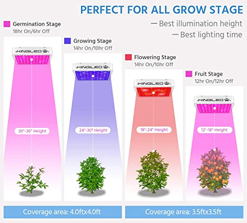 Best Value (cheap 1000w LED grow Light):King Plus