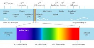 Light & Plants – how they interact